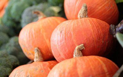 Pumpkin for Dayzzzz